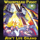 Ain't Life Grand by Widespread Panic