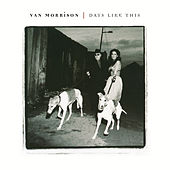 Days Like This by Van Morrison