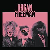 Organ Freeman by Organ Freeman