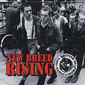 New Breed Rising by Various Artists
