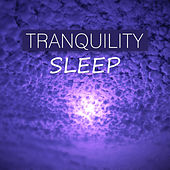 Tranquility Sleep – Sounds of Nature for Deep Sleep, Soothing Water Sounds for Rest, Calming Music for Relaxation, Insomnia Symptoms by Tranquility Sleep Ambient