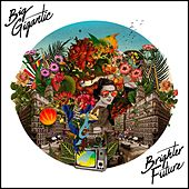 Brighter Future by Big Gigantic