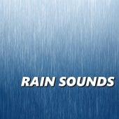 Rain Sounds by Rain Sounds XLE Library