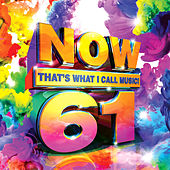 Now That's What I Call Music, Vol. 61 by Various Artists