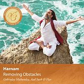 Meditations for Transformation: Removing Obstacles by Harnam