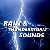 Rain & Thunderstorm Sounds by Thunderstorm Sounds