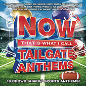 Now That's What I Call Tailgate Anthems by Various Artists