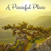A Peaceful Place by Meditation Music Zone