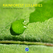 Rainforest Lullabies and Music for Sleeping Baby - Rainforest Sounds and baby Sleeping Songs. Lullabies for Babies, Soothing Music, Calm Music and Sounds of Nature to Help Your Baby Sleep by Rainforest Music Lullabies Ensemble