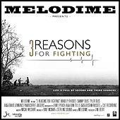 3 Reasons For Fighting by Melodime