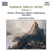 German Organ Music Vol. 1 by Various Artists
