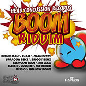 Boom Riddim von Various Artists