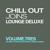 Chill Out Joins Lounge Deluxe, Vol. 3 (The Best in Pure Relaxation & Smooth Music) by Various Artists