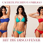 Cachete, Pechito Y Ombligo (Hit 1997) by Disco Fever