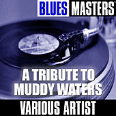 A Tribute To Muddy Waters by Various Artists