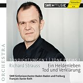 Richard Strauss: Tone Poems, Vol. 1 by Baden-Baden and Freiburg South West German Radio Symphony Orchestra