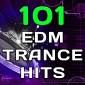 101 Edm Trance Hits - Best of Top Goa, Psytrance, Progressive, Fullon, Techno, Acid House, Rave Anthems by Various Artists