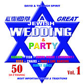 Jewish Wedding & Party, Vol. 1 by David & The High Spirit