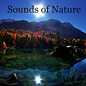 Sounds of Nature, Vol. 1 by Natural Sounds