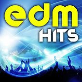 Edm Hits - Best of Electronic Dance Music, Dubstep, House, Trance, Goa, Electro, D&B, Rave Anthems by Various Artists