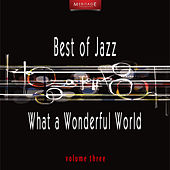 Meritage Best of Jazz: What a Wonderful World, Vol. 3 by Various Artists
