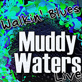 Walkin' Blues (Live) by Muddy Waters
