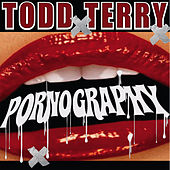 Pornography by Todd Terry