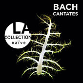 Bach: Cantates by Various Artists