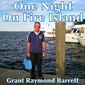 One Night on Fire Island by Grant Raymond Barrett