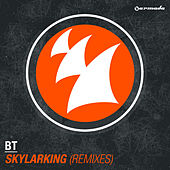 Skylarking (Remixes) von BT