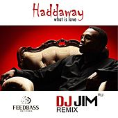 What Is Love (DJ JIM Remix) by Haddaway