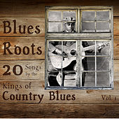 Blues Roots: 20 Songs by the Kings of Country Blues by Various Artists