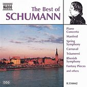 SCHUMANN : The Best Of Schumann by Various Artists