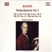 HAYDN: String Quartets, Vol.  2 by Orchestra of the Golden Age