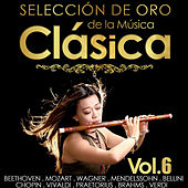 Selección de Oro de la Música Clásica.  Vol. 6 by Various Artists