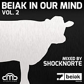 Beiak in Our Mind, Vol. 2 by Various Artists