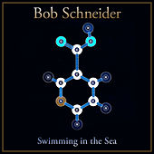 Swimming in the Sea by Bob Schneider