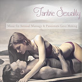 Tantric Sexuality (Music for Sensual Massage and Passionate Love Making) [Mixed By DJ MNX] by Various Artists