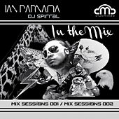 In the Mix (Session 001 & 002) by Various Artists