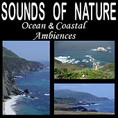 Sounds of Nature: Ocean and Coastal Ambiences by Dr. Sound Effects