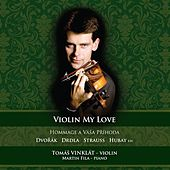 Violin My Love by Tomas Vinklat