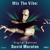 Mix the Vibe: David Morales by Various Artists
