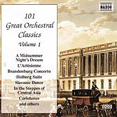 101 Great Orchestral Classics Vol. 1 by Various Artists