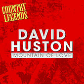 Mountain Of Love by David Houston