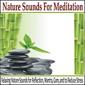 Nature Sounds for Meditation: Relaxing Nature Sounds for Reflection, Mantra, Gom and to Reduce Stress by Robbins Island Music Group