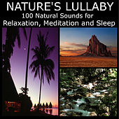 Nature's Lullaby: 100 Natural Sounds for Relaxation, Mediation and Sleep by Dr. Sound Effects