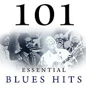 101 Essential Blues Hits by Various Artists