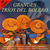 Grandes Tríos del Bolero by Various Artists