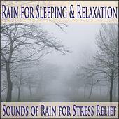 Rain for Sleeping & Relaxation: Sounds of Rain for Stress Relief by Robbins Island Music Group