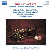 Horn Concerti by Various Artists